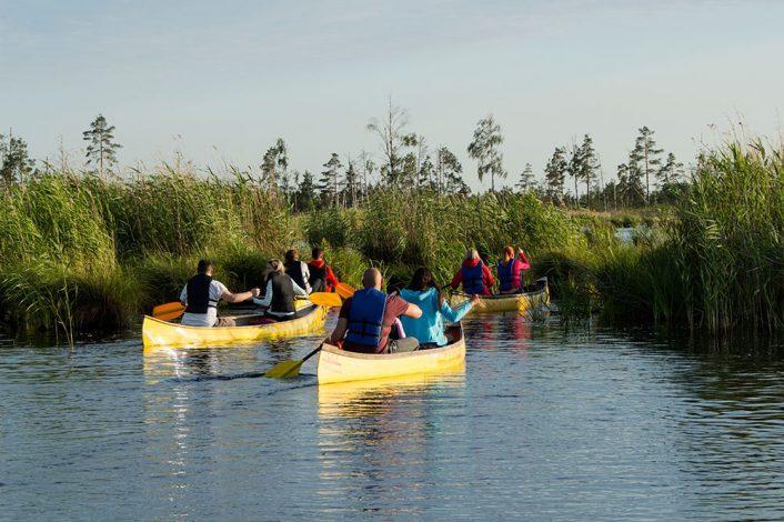 people kayaking at the everglades
