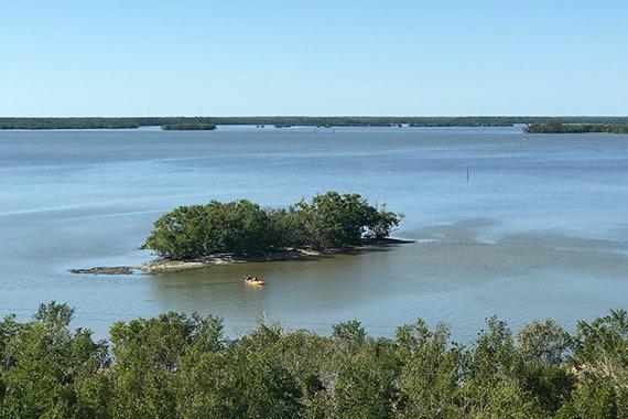 photo of everglades national park