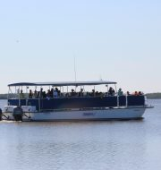 10,000 islands boat tours